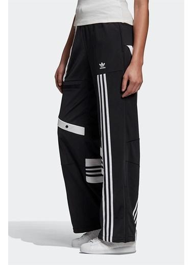 adidas Adidas Kadın Günlük Eşofman Takımı D. Cathari Tp Gd2413 Siyah